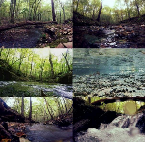 6 images of creeks around Lauderdale County